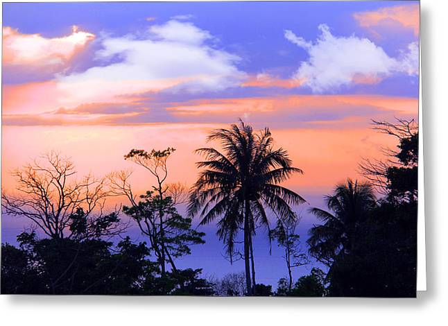 Patong Thailand Greeting Card by Mark Ashkenazi