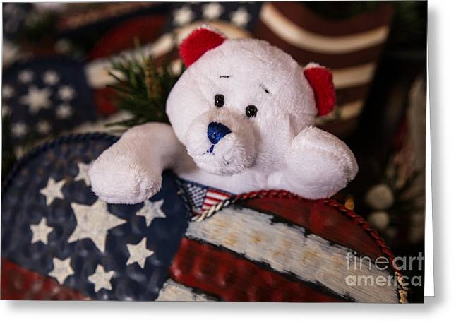 Patriotic Teddy Bear Greeting Card
