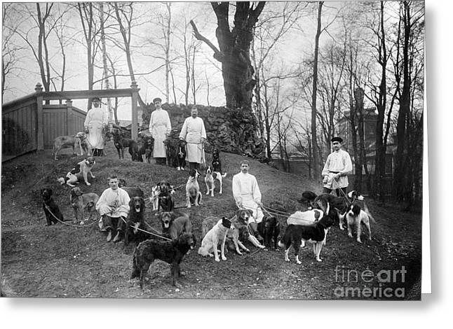 Pavlovs Dogs With Their Keepers, 1904 Greeting Card by Wellcome Images