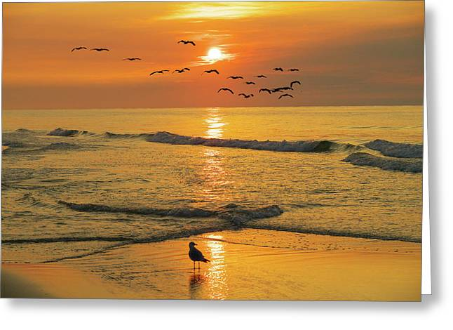 Pawleys Island Sunrise Greeting Card