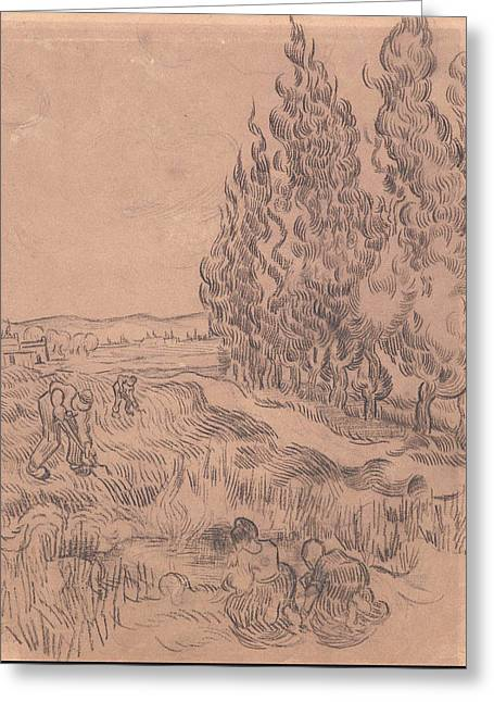 Paysage Avec Cypres Cypresses With Four People Working In The Field 1889 Greeting Card by Vincent Van Gogh