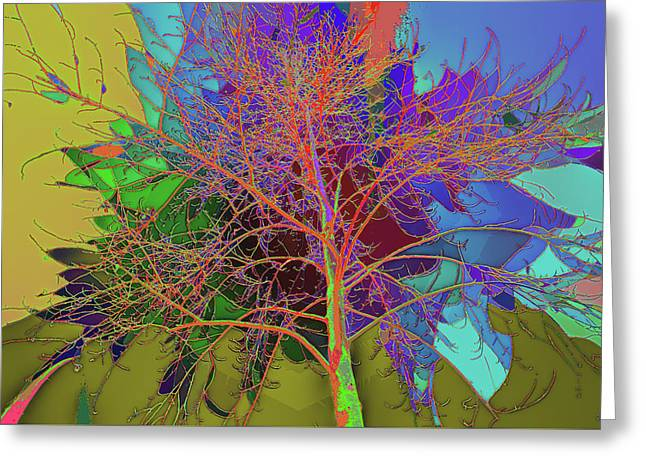 P C C Elm In The Wait Of Bloom Greeting Card by Kenneth James