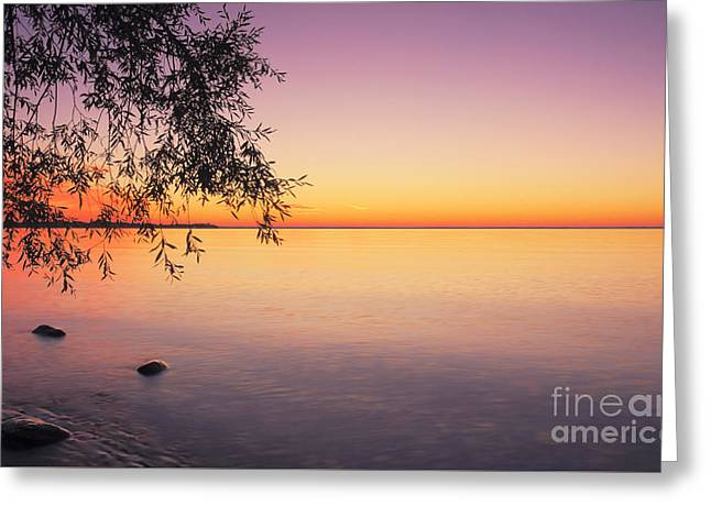Peace At Sunset Greeting Card by Charline Xia