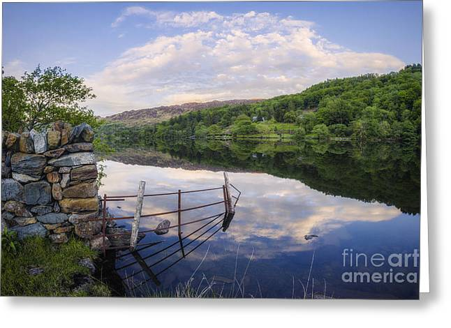 Peace At The Lake Greeting Card by Ian Mitchell