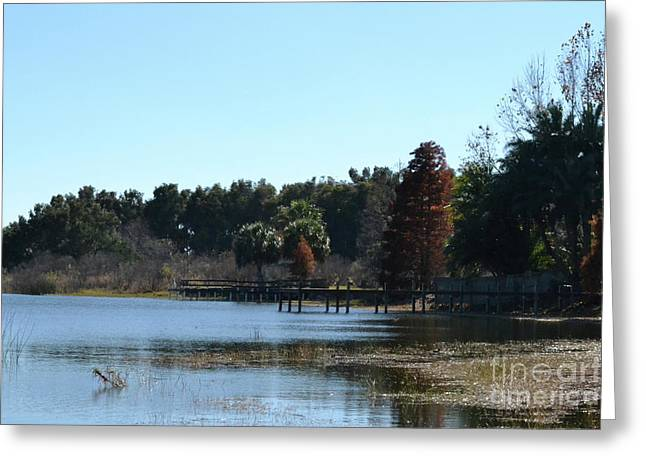 Greeting Card featuring the photograph Peace by Carol  Bradley