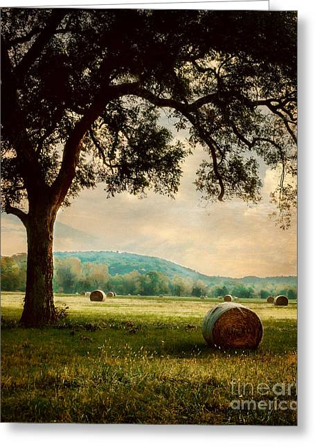 Peace In The Valley Greeting Card by Tamyra Ayles