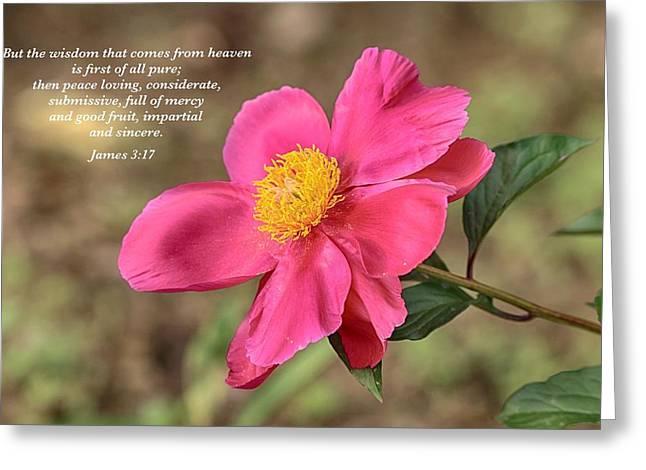 Peace Loving Greeting Card by Lynn Hopwood