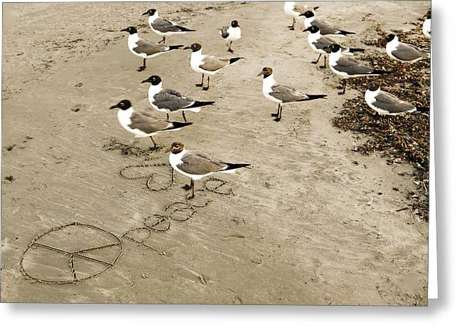 Peace On The Beach Greeting Card by Marilyn Hunt