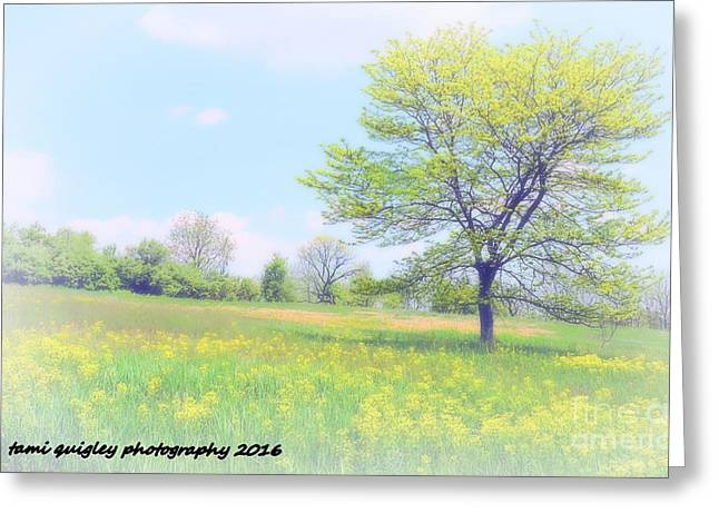 Peace On The Hillside Greeting Card