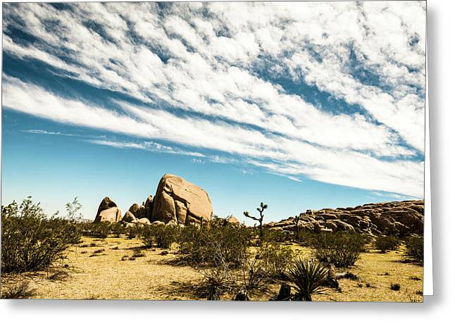 Peaceful Boulder Greeting Card by Amyn Nasser