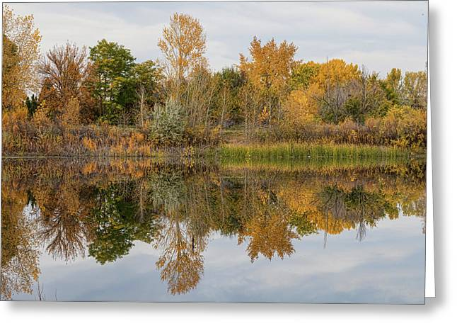 Peaceful Calm Autumn Afternoon Greeting Card