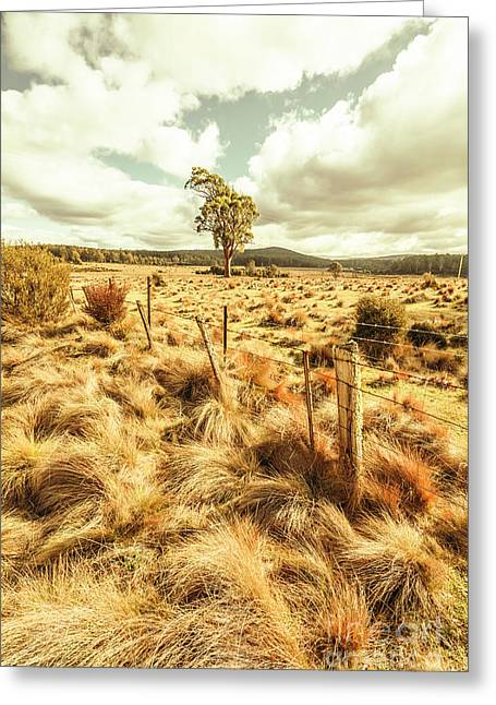 Peaceful Country Plains Greeting Card