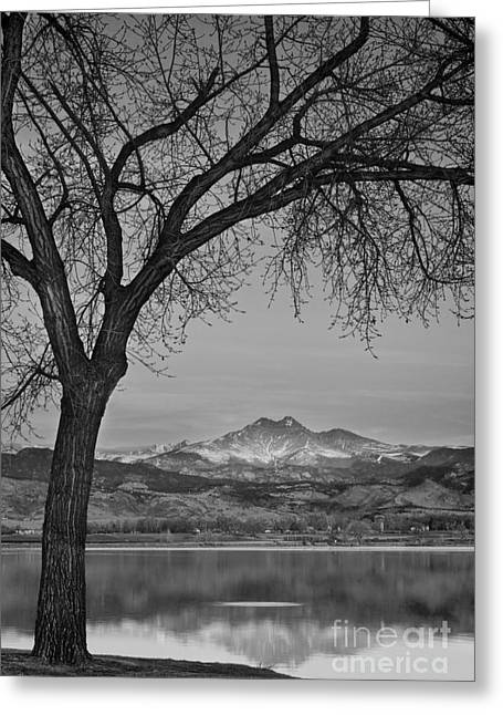 Peaceful Early Morning Sunrise Longs Peak View Bw Greeting Card by James BO  Insogna