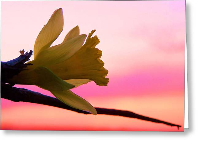 Peaceful Easy Feeling Greeting Card by Karen M Scovill