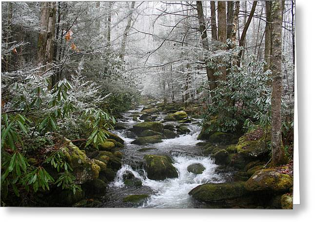 Peaceful Flow Greeting Card by Andrei Shliakhau