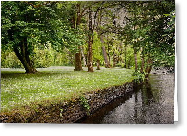 Peaceful Ireland Landscape Greeting Card by Cheryl Davis