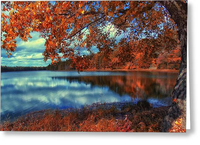 Peaceful Lake View Greeting Card