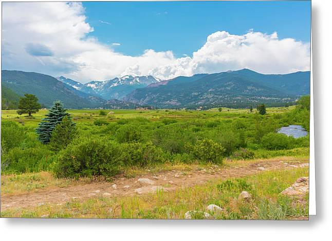 Greeting Card featuring the photograph Peaceful Meadow by Tom Potter