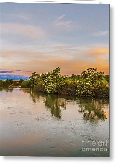 Peaceful Morning View Greeting Card by Robert Bales