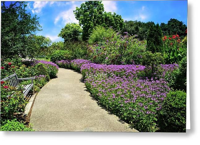 Peaceful Pathway At Huntington Gardens Greeting Card