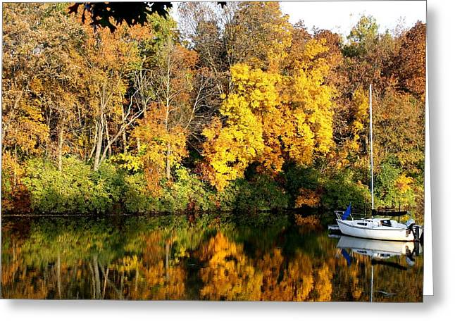 Greeting Card featuring the photograph Peaceful Reflections by Bruce Bley