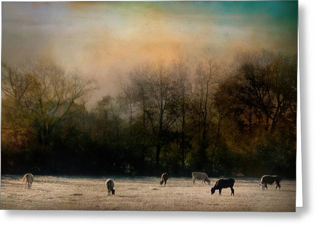 Peaceful Tennessee Morning Greeting Card by Jai Johnson
