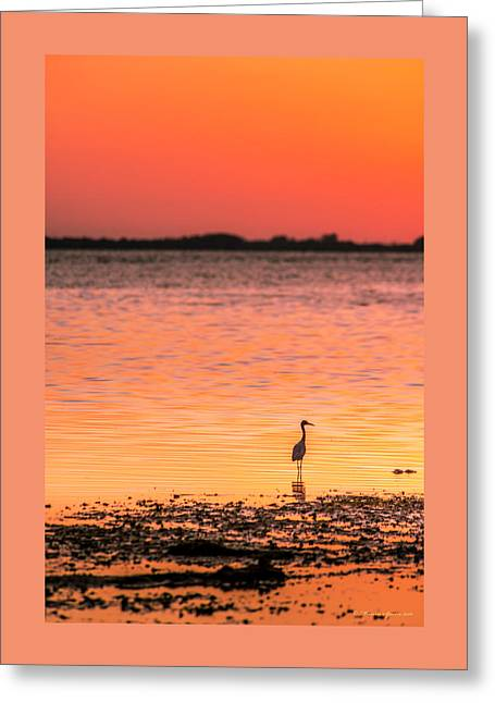 Peaceful Times Greeting Card by Marvin Spates