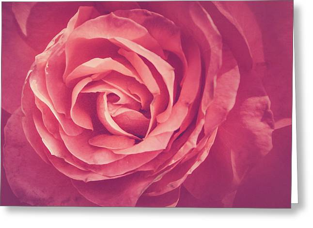 Blooms And Petals Greeting Card
