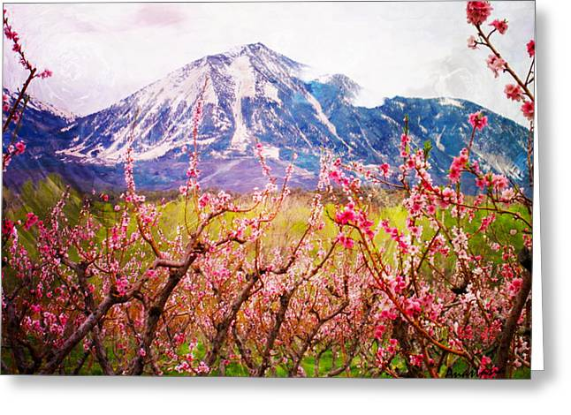 Peach Blossoms And Mount Lamborn II Greeting Card
