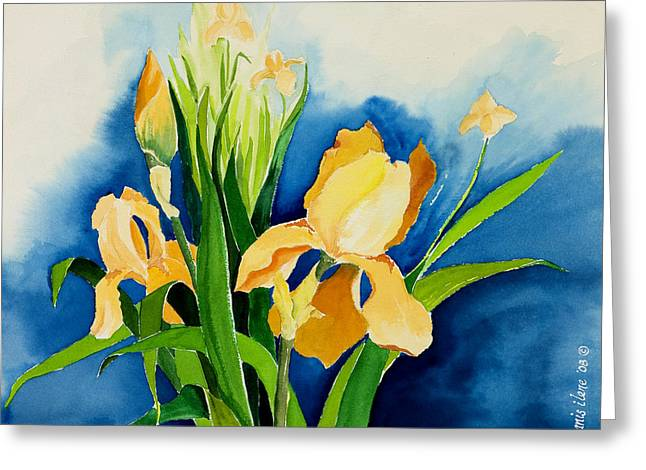 Peach Irises Greeting Card by Janis Grau
