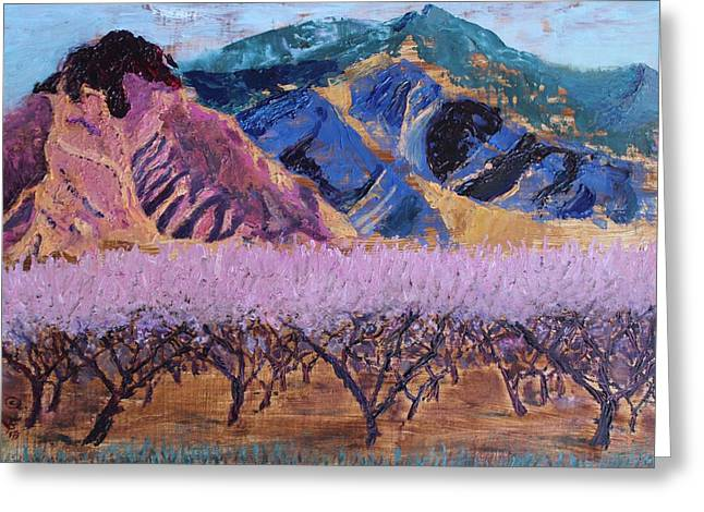 Peach Orchard Canigou Greeting Card