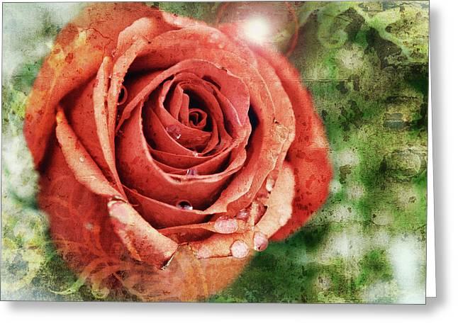 Peach Rose Greeting Card by Sennie Pierson