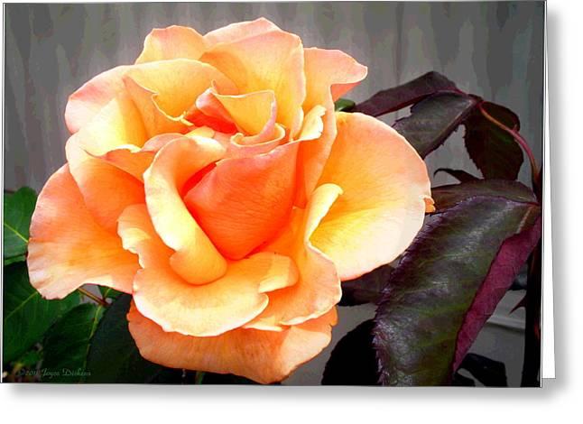 Peaches N' Cream Greeting Card by Joyce Dickens