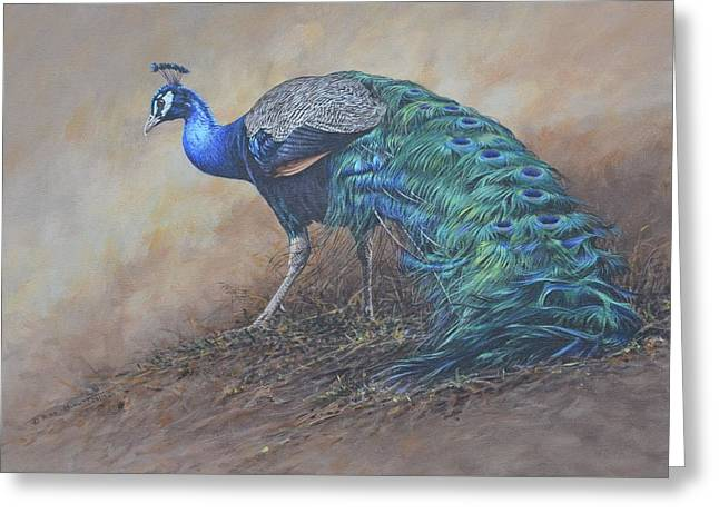 Greeting Card featuring the painting Peacock by Alan M Hunt