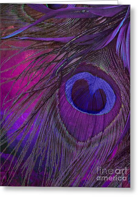 Peacock Candy Purple  Greeting Card by Mindy Sommers