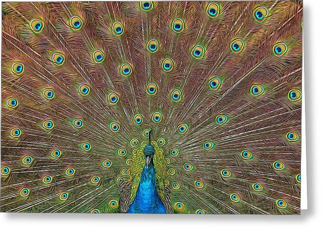 Peacock Fanfare Greeting Card