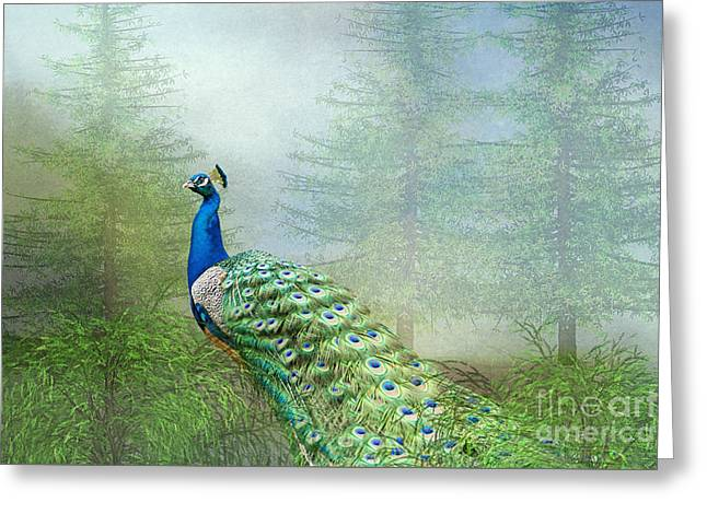 Greeting Card featuring the photograph Peacock In The Forest by Bonnie Barry