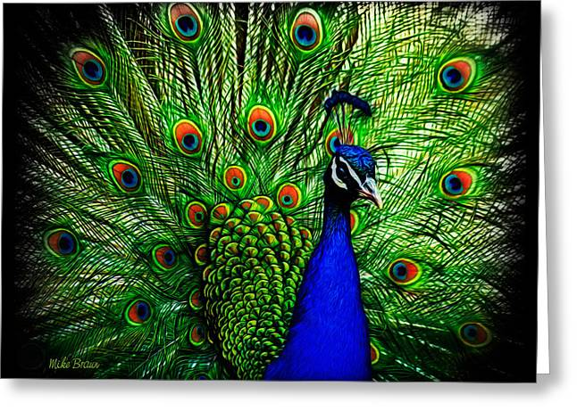 Peacock Paradise Greeting Card