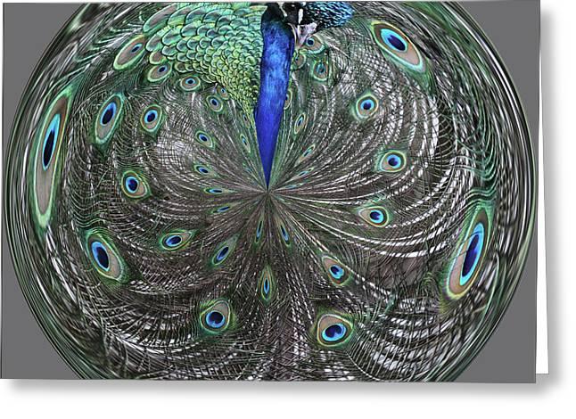 Peacock Swirl #2 Greeting Card