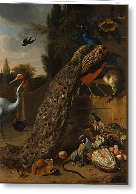 Greeting Card featuring the painting Peacocks by Melchior d'Hondecoeter