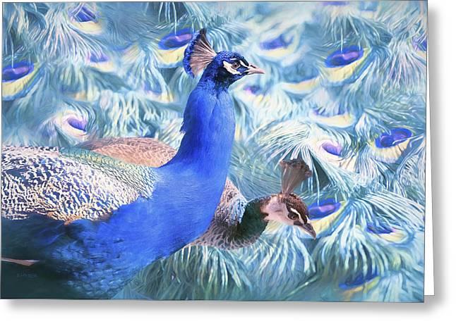 Peafowl Greeting Card by Barbara Hymer