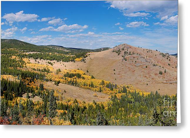 Peak To Peak Highway Fall Foliage In The Rocky Mountains - Boulder County Colorado State Greeting Card
