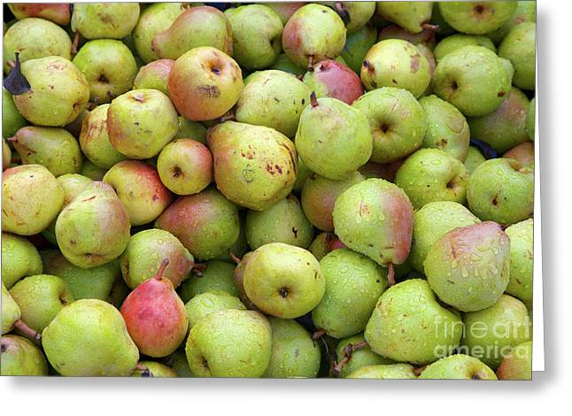 Pear Harvest Greeting Card