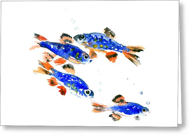Pearl Danio Greeting Card by Suren Nersisyan