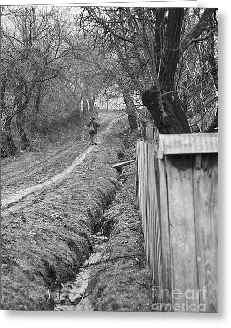 Peasant Man On A Muddy Road Greeting Card by Gabriela Insuratelu