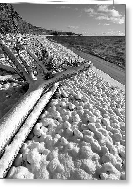 Pebble Beach Winter Greeting Card