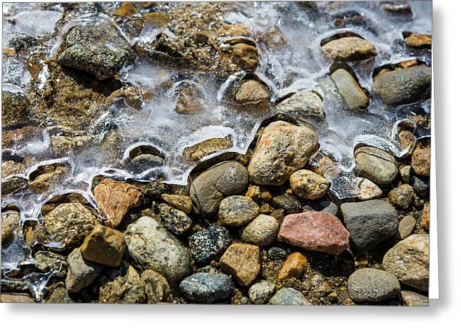 Pebbles And Ice Greeting Card