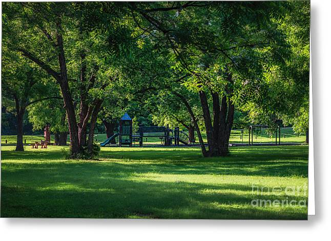 Pecan Grove In Summer Greeting Card