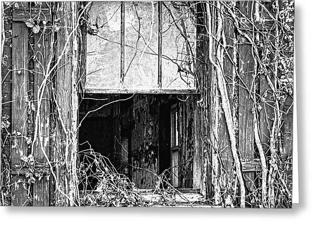 Peeking In The Old Schoolhouse Window Greeting Card by William Sturgell