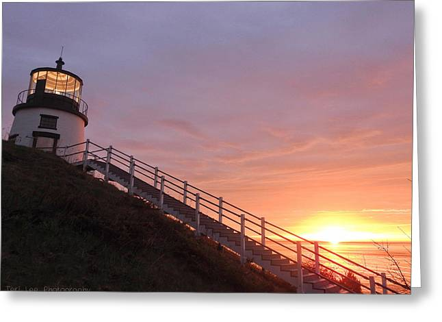 Peeking Sunrise Greeting Card